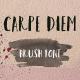 Carpe Diem Brush Font - GraphicRiver Item for Sale