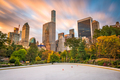 New York, New York, USA cityscape from Central Park - PhotoDune Item for Sale