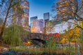 Central Park during autumn in New York City - PhotoDune Item for Sale