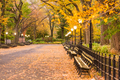 Central Park at The Mall in New York City - PhotoDune Item for Sale