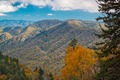 Great Smoky Mountains National Park, Tennessee, USA at the Newfound Pass - PhotoDune Item for Sale