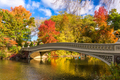 Central Park New York - PhotoDune Item for Sale