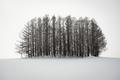 Biei, Japan In winter - PhotoDune Item for Sale