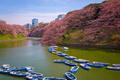 Tokyo, Japan at Chidorigafuchi Imperial Palace moat - PhotoDune Item for Sale