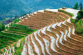 Yaoshan Mountain, Guilin, China hillside rice terraces landscape - PhotoDune Item for Sale