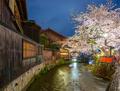 Kyoto, Japan during Cherry Blossom Season - PhotoDune Item for Sale