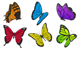 Set of Colorful Butterflies - GraphicRiver Item for Sale