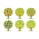 Set of Different Fruit Trees - GraphicRiver Item for Sale