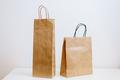 craft paper shopping bag - PhotoDune Item for Sale