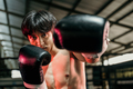 Strong young man stand wearing boxing gloves with fist in the arena - PhotoDune Item for Sale