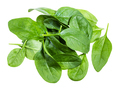 pile of fresh green leaves of Spinach isolated - PhotoDune Item for Sale