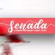 Senada Beauty Script Handwritten - GraphicRiver Item for Sale