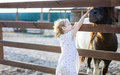 Little girl stroking pony in zoo - PhotoDune Item for Sale