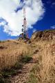 Mt Victoria, Wellington, New Zealand - PhotoDune Item for Sale