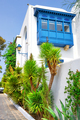 Palm trees and balcony on white and blue city of Sidi Bou Said - PhotoDune Item for Sale