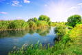 River in a meadow among green trees - PhotoDune Item for Sale