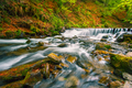 Waterfall on mountain river in autumn forest - PhotoDune Item for Sale