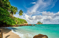 Beach with palm tree and rocks landscape - PhotoDune Item for Sale