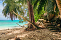 Beautiful Anse Soleil beach at Seychelles - PhotoDune Item for Sale