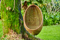 Beach swing egg chair at Seychelles - PhotoDune Item for Sale