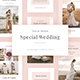 Special Wedding - Animated Instagram Stories - GraphicRiver Item for Sale