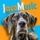 Gypsy Jazz for Jaco