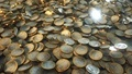 Euro Coins Piled - PhotoDune Item for Sale