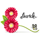March 8 Symbol of Gerbera Flowers with a Butterfly - GraphicRiver Item for Sale