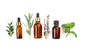 Dropper bottles with oil and herbs on white table flat lay view. Herbal cosmetics concept - PhotoDune Item for Sale