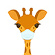 Giraffe Head in a Medical Mask - GraphicRiver Item for Sale