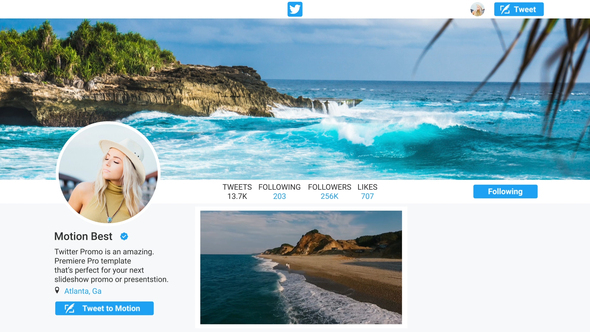 Twitter Profile Promo