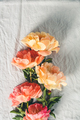 Flat-lay of Beautiful peony flowers over grey linen table cloth background, top view, copy space - PhotoDune Item for Sale