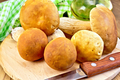 Ceps with knife and napkin on board - PhotoDune Item for Sale