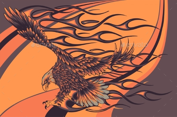 Flaming Eagle on Colored Background Vector