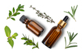 Isolated on white background Dropper bottles with oil and herbs on white table flat lay view - PhotoDune Item for Sale