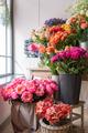 Beautiful flowers at the florist shop - PhotoDune Item for Sale