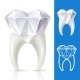 Vector tooth in the shape of diamond - GraphicRiver Item for Sale