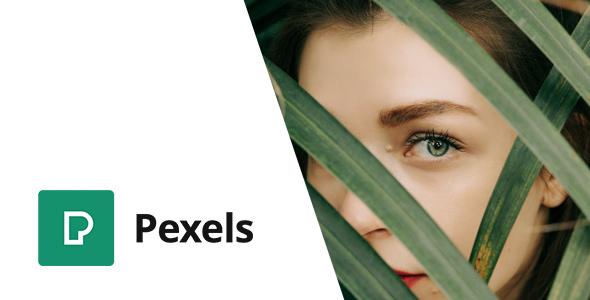 Pexels - Import Free Stock Images into WordPress