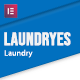 Laundryes - Laundry & Cleaning Elementor Template Kit - ThemeForest Item for Sale