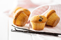 Vanilla muffins. Sweet cupcakes and vanilla pods. - PhotoDune Item for Sale