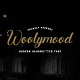 Woolymood Handwritten Font - GraphicRiver Item for Sale