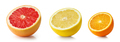 half of citrus fruits isolated on white background - PhotoDune Item for Sale