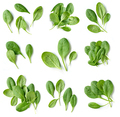 set of fresh green spinach leaves isolated on white background, top view - PhotoDune Item for Sale