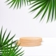 Wooden Podium with Palm Leaves and Shadows - GraphicRiver Item for Sale