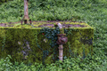 Old abandoned water tank covered in moss and ivy - PhotoDune Item for Sale