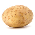 new potato tuber isolated on white background cutout - PhotoDune Item for Sale