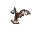 Aquila chrysaetos, golden eagle attacking on white background isolate - PhotoDune Item for Sale