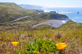 Lush California Pacific Coast Highway 1 in Spring - PhotoDune Item for Sale