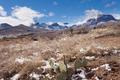 Chisos Mountains snowy desert Big Bend NP Texas - PhotoDune Item for Sale