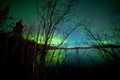 Northern lights shore willows lake surface mirror - PhotoDune Item for Sale